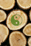 Stacked Logs Background with ying yang symbol Stock Photography