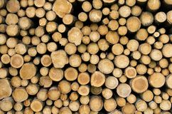 Stacked logs. Freshly cut and stacked wood logs. Wooden abstract background Royalty Free Stock Image
