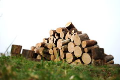 Stacked logs and grass Royalty Free Stock Images