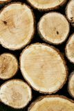 Stacked Logs, Natural Background Royalty Free Stock Photos
