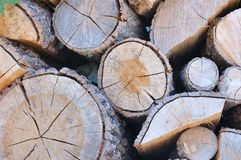 Stacked logs. To burn when winter comes Stock Photo