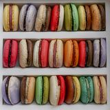 Stacked macarons multicolor cookies in box stock photo