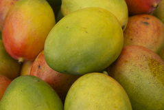 Stacked Mangoes. Colurful mango fruit in a stack on an open air market stall Royalty Free Stock Photo