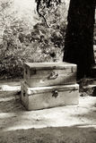 Stacked Metal Chests. A black and white image of two tin trunks stacked on top of each other next to a tree on the ground Stock Image