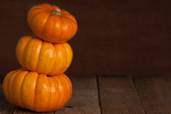 Stacked Minature Pumpkins with Copy Space Royalty Free Stock Photo