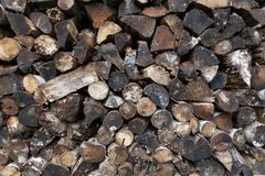 Stacked mixed cord of wet and dirty firewood. Side view of a neatly stacked mixed cord of wet and dirty firewood stock photo