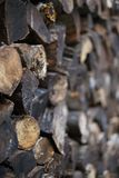 Stacked mixed cord of wet and dirty firewood. Shallow depth of field view of a neatly stacked mixed cord of wet and dirty firewood royalty free stock photos