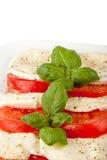 Stacked Mozzarella slices. Some Mozzarella slices stacked with tomatoes and basil stock photo