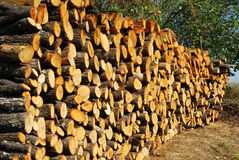 Stacked oak firewood perspective. Stacked oak firewood heap in countryside garden in perspective royalty free stock images