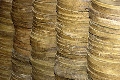 Stacked oilcakes Stock Images