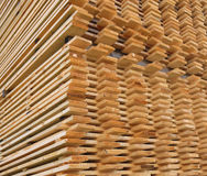 Stacked Pine Timber Planks Drying Stock Photos