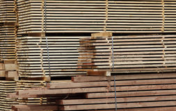 Stacked planks of wood Stock Images