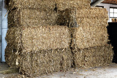 Stacked rectangular hay bales in a barn Stock Photography