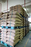 Stacked of Rice sacks in warehouse. Stock Photography