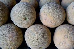 Free Stacked Ripe Cantaloupes Royalty Free Stock Images - 5677869