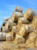 Stacked rolled hay bales. Rolled hay bales in huge stack Royalty Free Stock Photo
