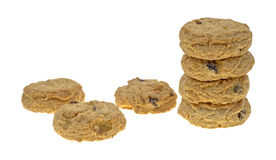 Stacked and separate oatmeal raisin cookies Royalty Free Stock Images