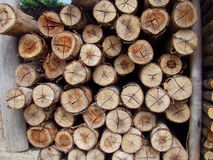 Stacked sort pine timber Royalty Free Stock Photos
