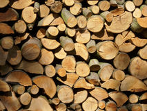 Firewood log stack Stock Photography