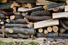 Stacked Split Wood. Stacked, cut and split wood pieces are stacked neatly by the autumn leaves Stock Photos