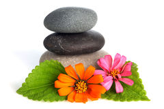 Stacked stones with flowers Stock Photo