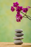 Stacked stones with orchid Royalty Free Stock Images