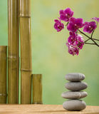 Stacked stones with orchid Royalty Free Stock Photos