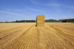 Stacked straw bales in a golden stubble field Royalty Free Stock Image