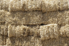 Stacked Straw Hay Bails Royalty Free Stock Image