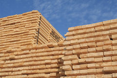 Stacked timber Stock Photo