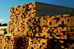 Stacked Timber. Lumber sawn and drying Royalty Free Stock Photo