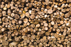 Stacked of timber logs Stock Images