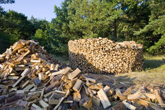 Stacked timber logs for bio heating Royalty Free Stock Photo