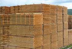 Stacked Timber Planks Drying Royalty Free Stock Photos