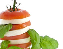 Stacked tomato mozzarella and fresh basil Stock Image