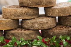 Stacked tomme de savoie cheese wheels Stock Image