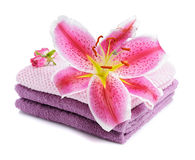 Stacked towels with pink lily Royalty Free Stock Photography