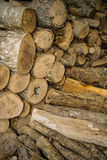 Stacked tree timber with bark for firewood. Trees cut and stacked as firewood logs Stock Images