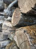 Logs Stacked Up Royalty Free Stock Photos