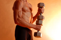Stacked up fitness Stock Photography