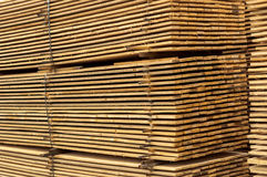 Stacked up wood Stock Images