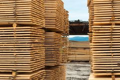 Stacked up wood Stock Photography