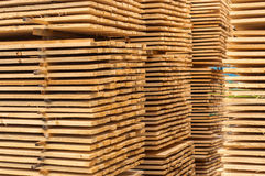 Stacked up wood Royalty Free Stock Photo