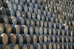 Stacked whisky barrels. In a cooperage in scotland Stock Images