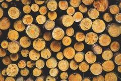 Stacked Wood Stock Photo