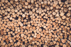 Stacked of wood log  for construction buildings background Stock Image