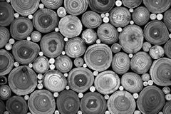 Stacked wood logs background Stock Photo