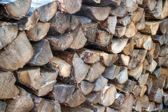 Stacked wood logs Royalty Free Stock Photo