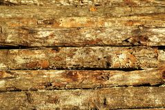 Stacked wood pile Stock Photos