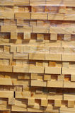 Stacked wood pine timber 1 Stock Photo